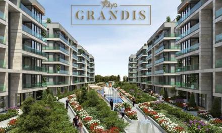 مجمع عليا غرانديز Alya Grandis بيليك دوزو