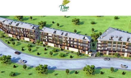 Pine Homes