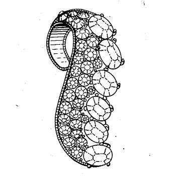 Bogoff Patent pg2