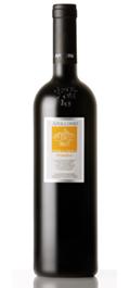 Product Image of Apollonio Terragnolo Primitivo Italian Wine