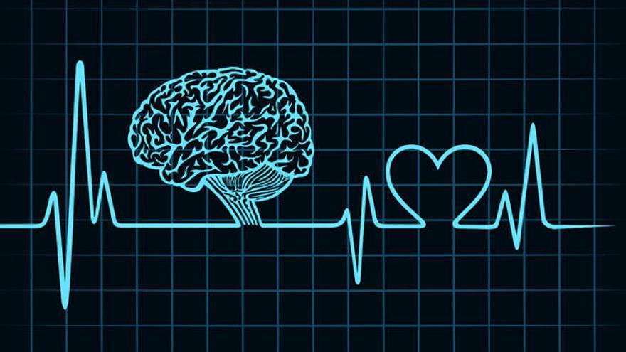 El cerebro y el corazón se comunican antes de la muerte - La Nueva España