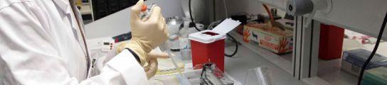 Usan células madre para crear un 'parche' que podría reparar las lesiones cardíacas  (Imagen: ARCHIVO)