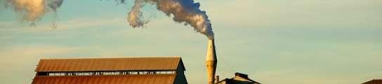 El barrio bilbaino de Zorroza respira desde hace semanas un aire pestilente