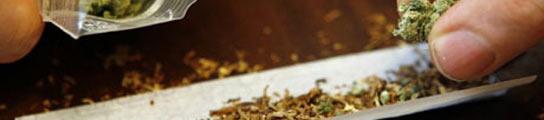 El consumo diario de cannabis predispone a sufrir psicosis y esquizofrenia