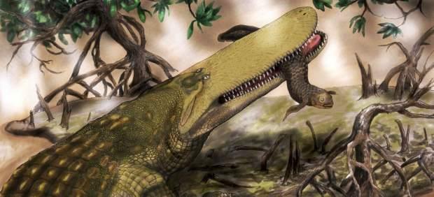 El 'cocodrilo escudo'