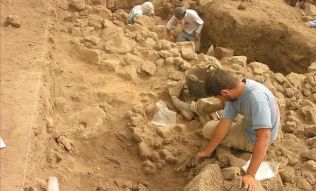 La agricultura dio sus primeros pasos en Siria hace 10.500 años