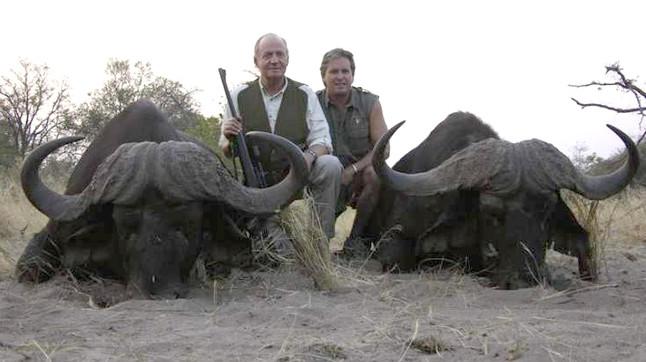 rey juan carlos búfalos