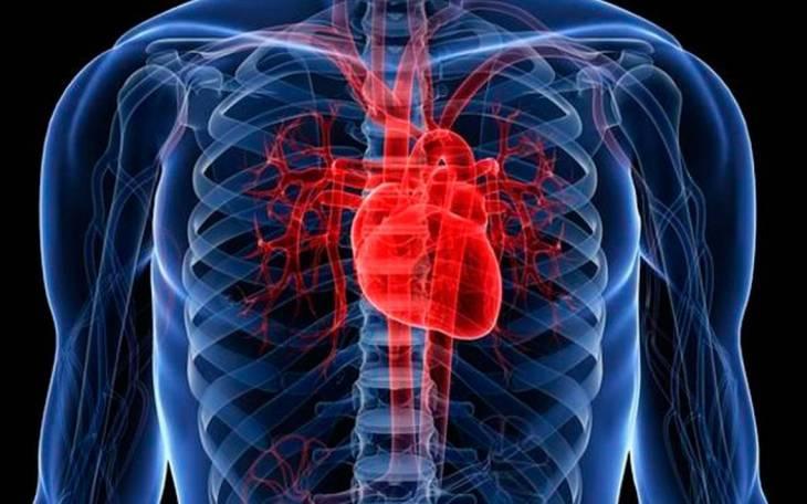Se consigue inyectando en la aorta una solución salina muy fría.
