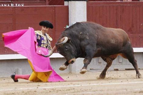 El Fandi torea con el capote rodilla en tierra. | Sergio González