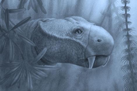 Reconstrucción de 'Dicynodon lacerticeps', que vivió durante el Pérmico.| Marlene Donnelly.