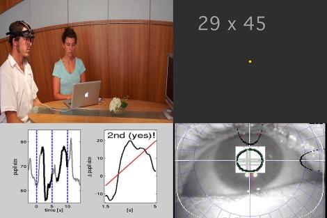 Una de las imágenes del experimento.| 'Current Biology'