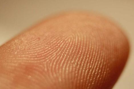 Primer plano de una huella dactilar.   Frettie