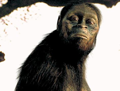Recreación de la 'Australopithecus afarensis', 'Lucy'. | FRANCE 3.