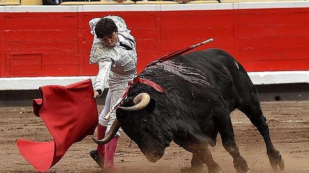 Malvarroso, un toro para soñar el toreo
