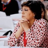 Ana Gomes pode resolver problemas a António Costa