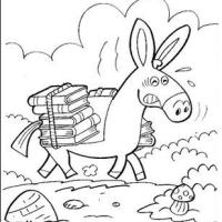 Um burro carregado de livros é um doutor
