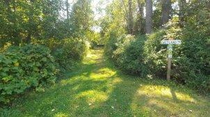 Wetland Trailhead Peters Rd.jpg.web