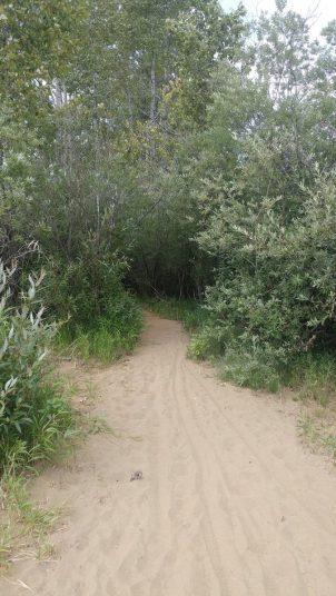 Wetland Westbeach Trailhead_.jpg.web
