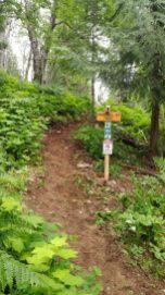 Fraser Hill VP Signpost_.jpg.web