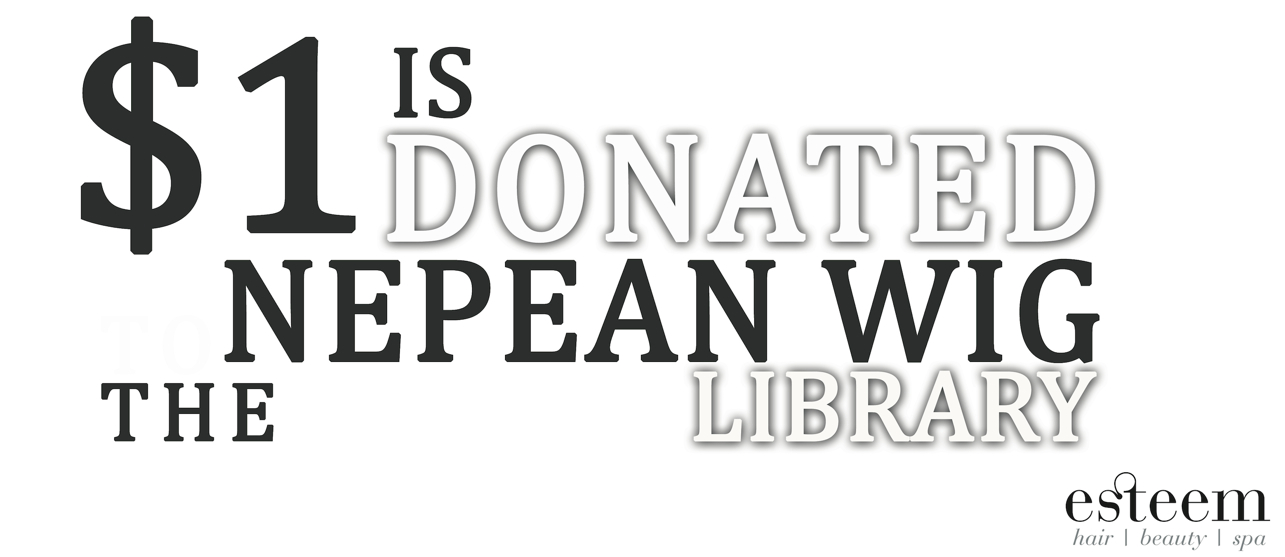 donatetothenepeanwiglibrarypenrith