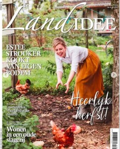 De cover van Landidee