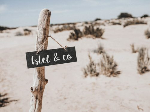 estel&co-mariage-en-camargue7