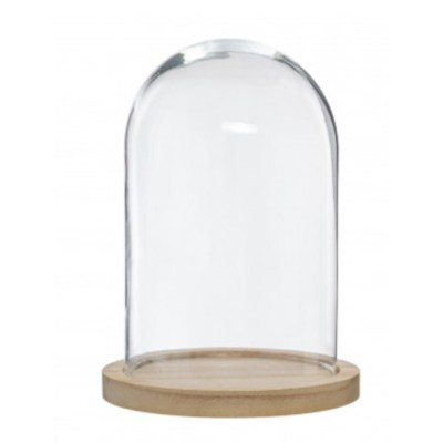 location-cloche-en-verre