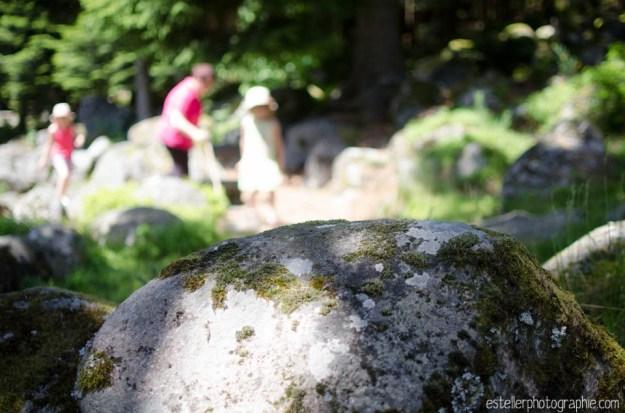 estellerphotographie photographe enfant famille lorraine franche comté vosges haute saône-22