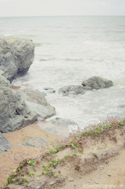Vendée Août 2014 BD-209