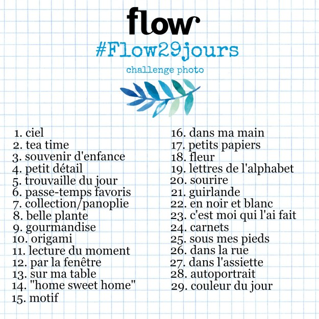 flow-29-jours-challenge-photo