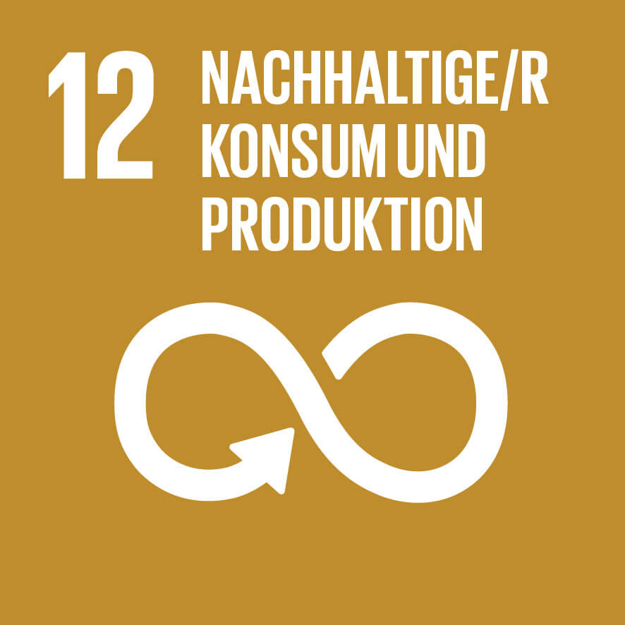 """Das Ziel 12 """"Nachhaltige/r Konsum und Produktion"""" ist wichtig für unsere Vision Mission Werte und Prinzipien."""