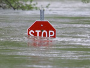 a stop sign in a flood