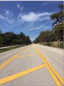 Coconut Road Traffic Study