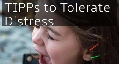 TIPPS tips to distress tolerance emotion heightens calm down