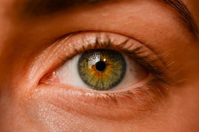Глазные капли устранят пресбиопию?