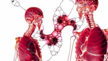 Диафрагма, - секретная мышца, требующая тренировок