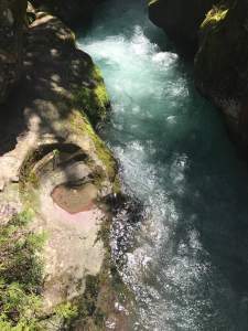 Wild and Free: Avalanche Creek in Glacier National Park, Montana