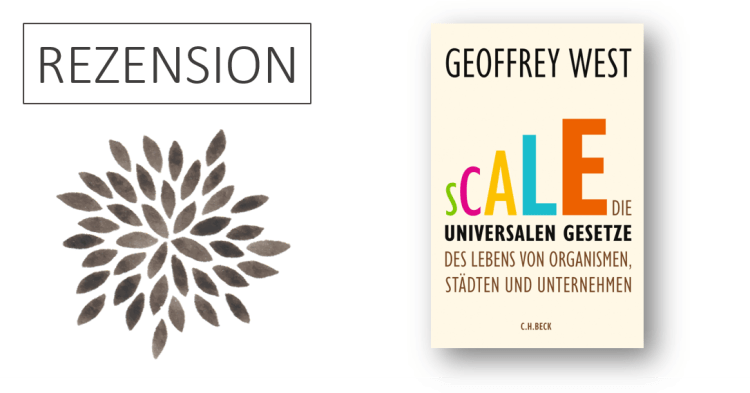 Rezension Geoffrey West Scale