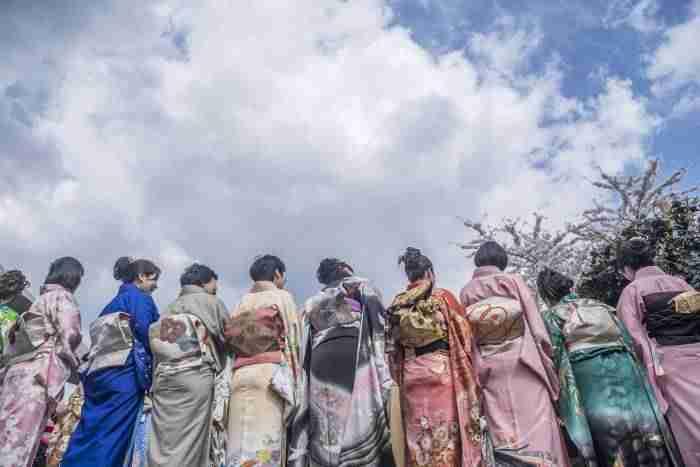 Sakura festival Amstelveen