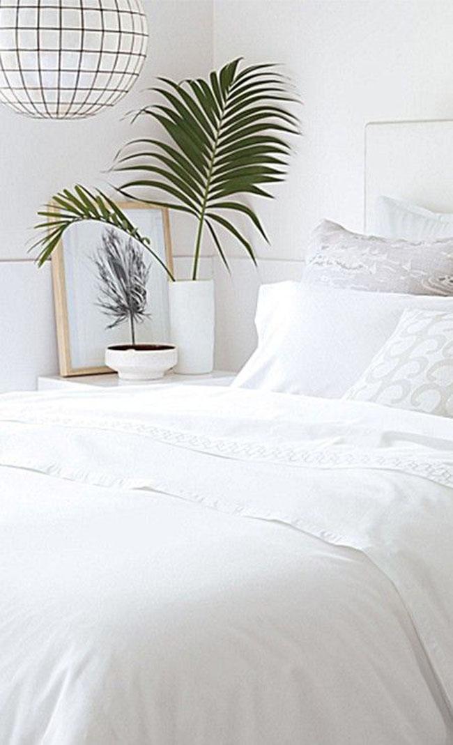 decoracion-blanco+plantas-01