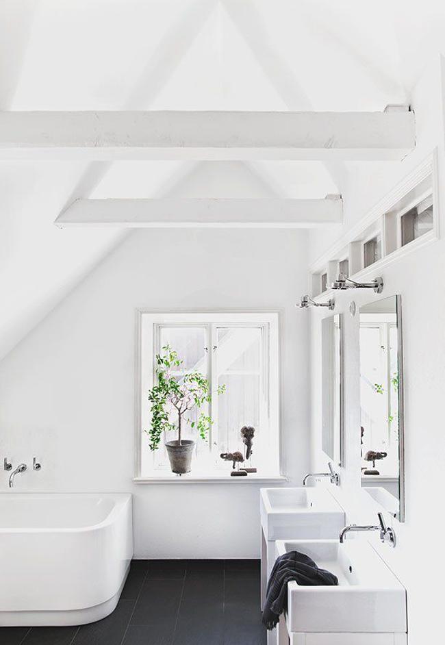 plantas-en-el-baño-12
