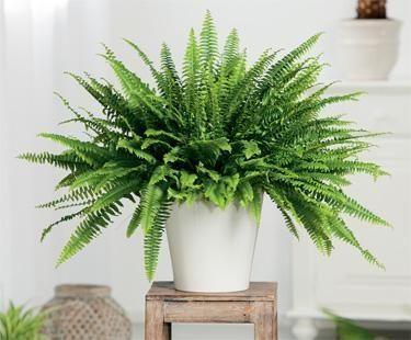 decorar con plantas artificiales 04