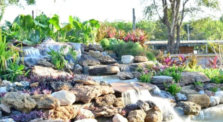 DD Garden Home, 229 Moo 13 Tumbol Buntum Aumphor Muang, Phayao, Thailand (12)