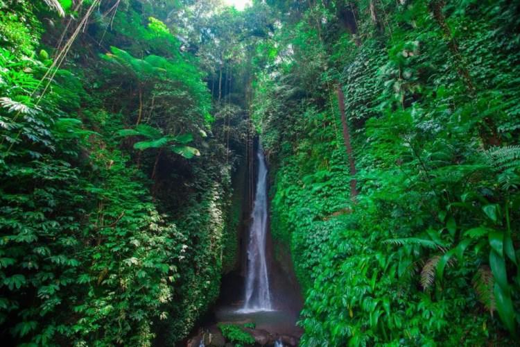 Leke Leke Waterfall, Waterfall Village, Ubud, Bali, Indonesia (1)