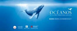 Océanos, el último territorio salvaje