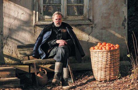 """Review: Estonian-Georgian film """"Tangerines"""""""