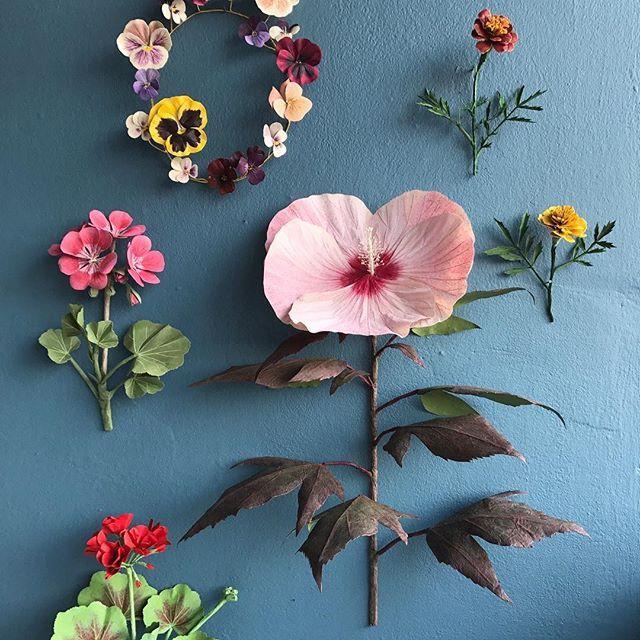 La botánica en papel de Woodlucker