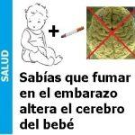 mar_en_el_embarazo_altera_el-cerebro_del_bebe-150x150