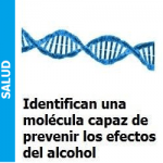 molecu_portada-150x150