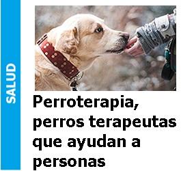 Perroterapia, perros terapeutas que ayudan a personas, Perroterapia, perros terapeutas que ayudan a personas